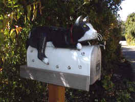 Mailbox with Cat and Paw Prints